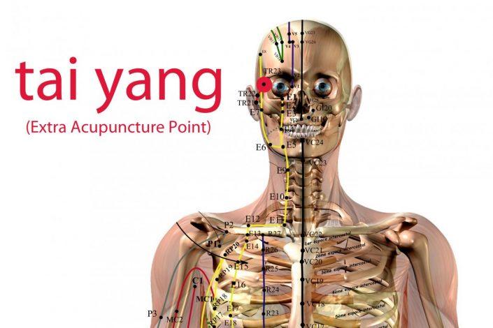 Il Cuore e l'Intestino Tenue nella Medicina Cinese